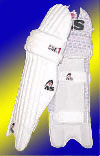 [Graphic: Shin pads worn by the batsmen]